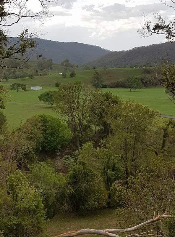 LOT 35 Findon Creek Road, Kyogle NSW 2474, Image 1