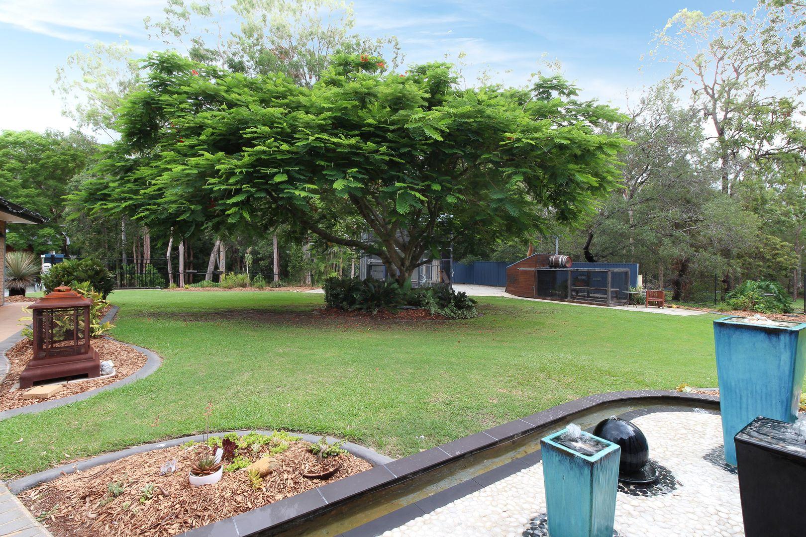11 Mikkelsen Court, Camira QLD 4300, Image 2