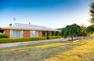 Picture of 48 Mcmasters Lane, Lancefield VIC 3435