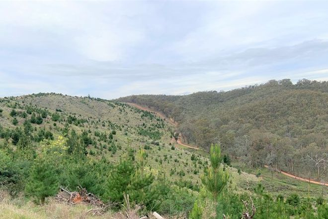 Picture of 5 Green Road, LURG VIC 3673