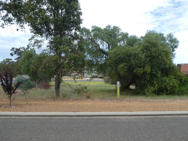 52 Albany Hwy, Mount Barker WA 6324, Image 2