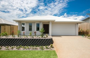 Picture of 96 Springbrook Avenue, Redlynch QLD 4870