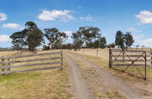 Picture of 740 Tallarook-Pyalong Road, Tallarook VIC 3659