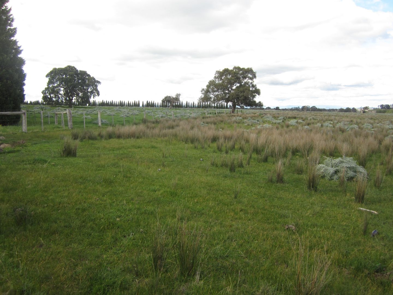 25 Amaroo rd, Craigieburn VIC 3064, Image 0