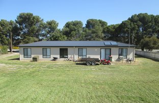 Picture of 3249 Dukes Highway, Coomandook SA 5261