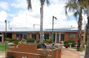 Picture of 2 Hannahs Lane, Coonabarabran NSW 2357