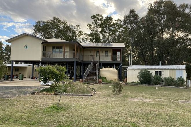 Picture of 27 Foster Street, CONDAMINE QLD 4416