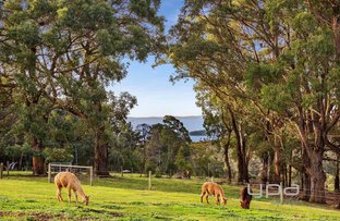 Picture of 336 Arthurs Seat Road, Red Hill VIC 3937