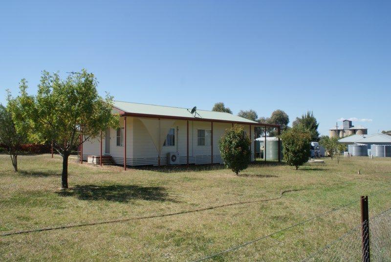 16 Warral St, Duri NSW 2344, Image 0