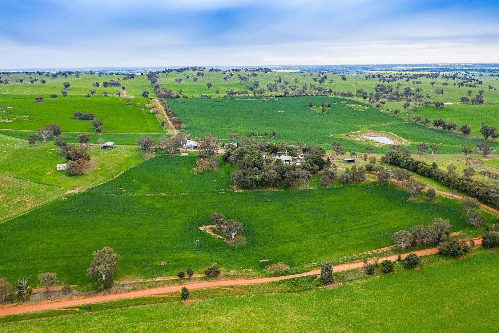 'MULLEMBLAH' 254 Mullemblah Road, Alma Park NSW 2659, Image 0