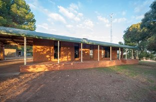 Picture of 162 Paynter Siding Road, Narrandera NSW 2700
