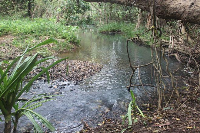 Picture of 50 Mount Pelion Road, MOUNT PELION QLD 4741