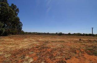 Picture of 142 Gordon Road, Barmera SA 5345