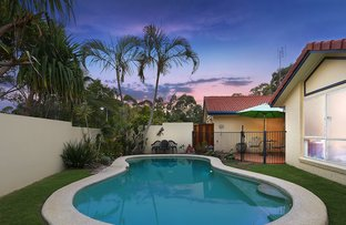 Picture of 22 Connors Close, Buderim QLD 4556