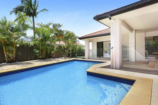Picture of 3 Wallum Close, PELICAN WATERS QLD 4551