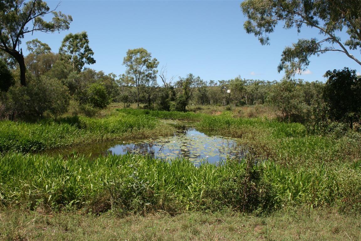 670 Hourigan Creek Road, Raglan QLD 4697, Image 0