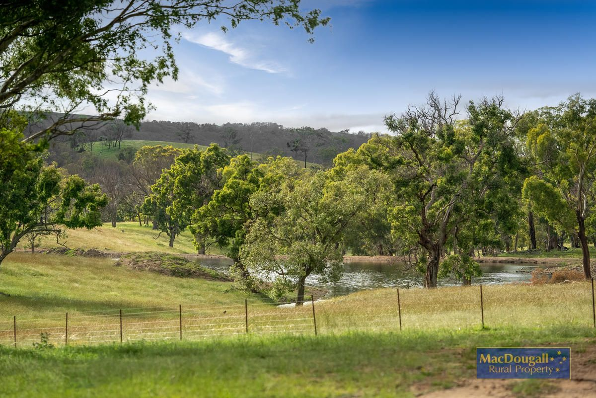 Lindon Road, Uralla NSW 2358, Image 2