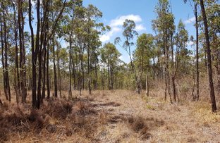 Picture of Lot509 Orchid Close, Millstream QLD 4888