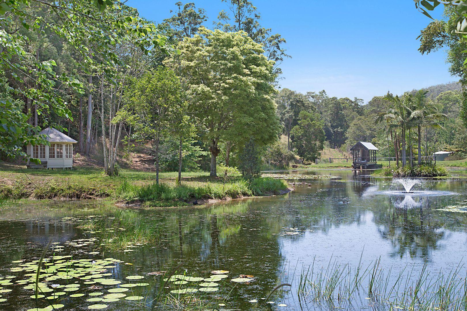 351 Zara Road, Zara NSW 2484, Image 0