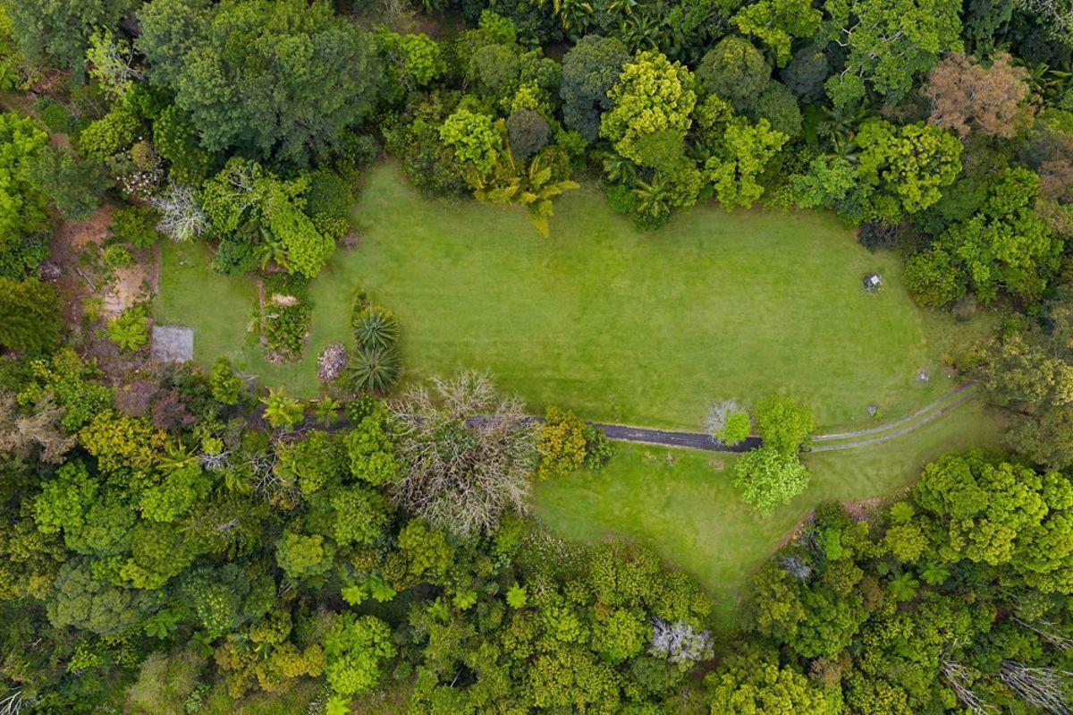 497 Mount Warning Road,, Mount Warning NSW 2484, Image 1