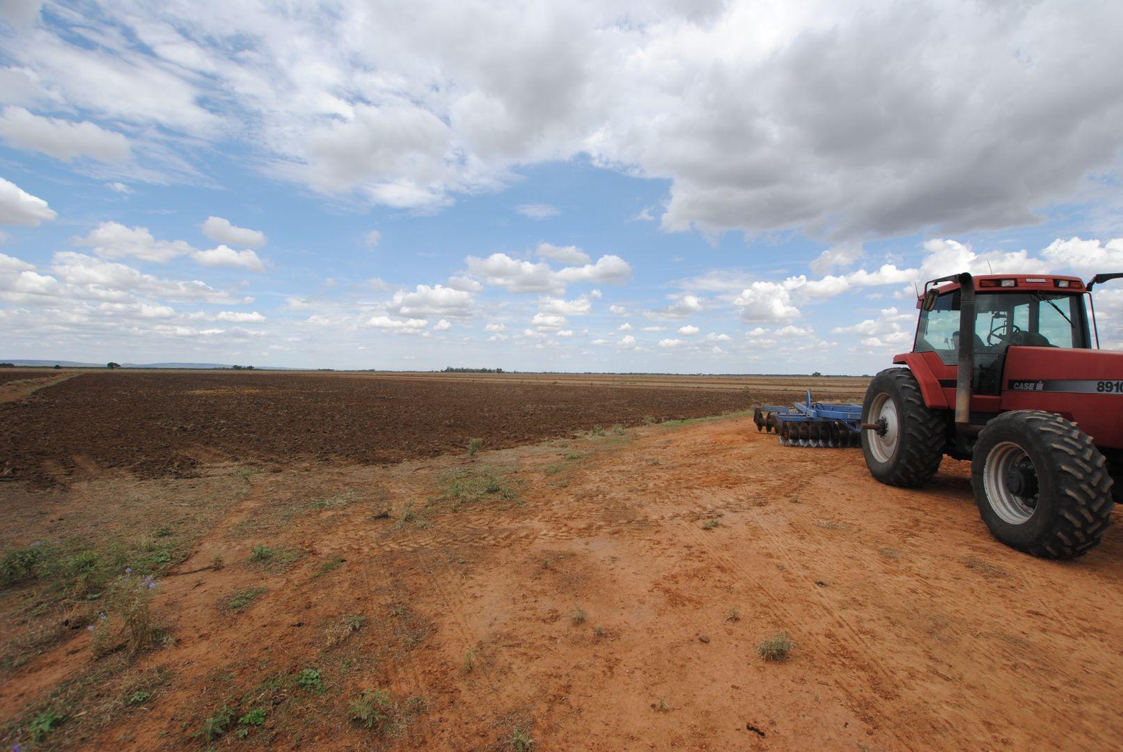 Farm 1078 Murrami Road, Murrami NSW 2705, Image 0