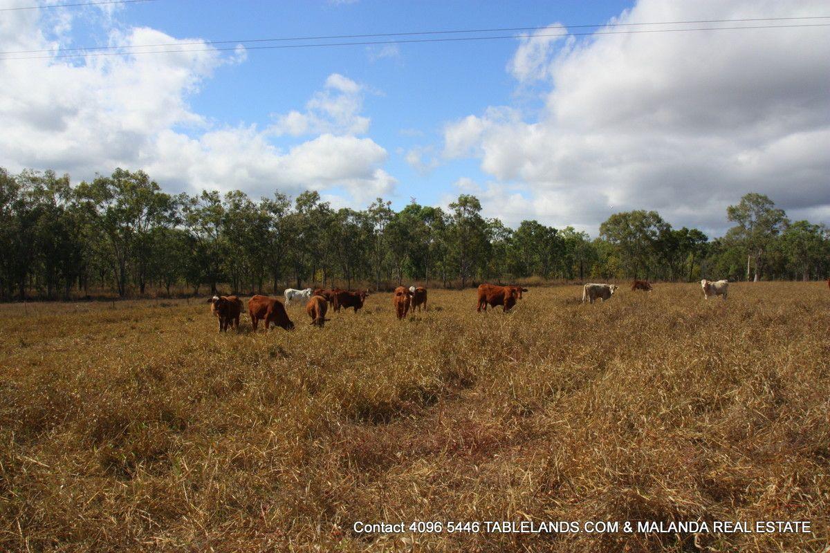 Chewko QLD 4880, Image 2
