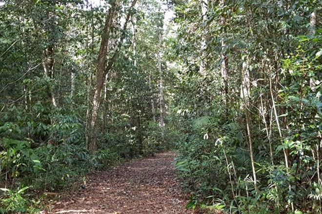 Picture of DANBULLA QLD 4872