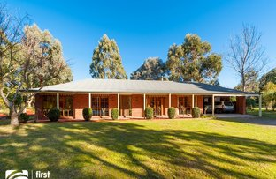 11 Stuart Court, Riddells Creek VIC 3431