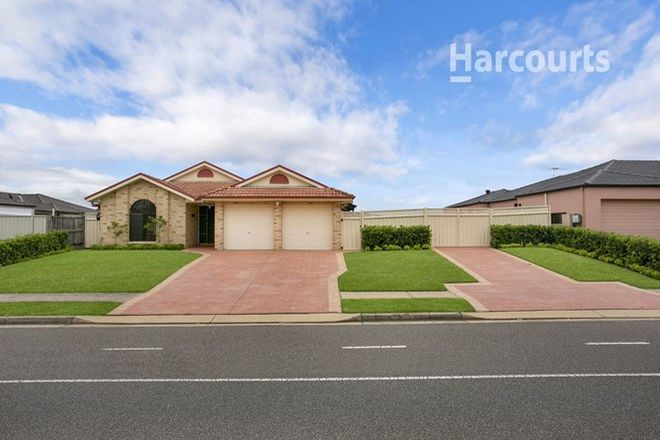 Picture of 14 Englorie Park Drive, GLEN ALPINE NSW 2560
