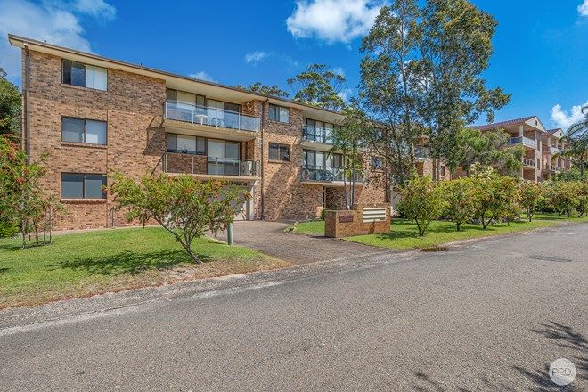 Picture of 1/12 Weatherly Close, NELSON BAY NSW 2315