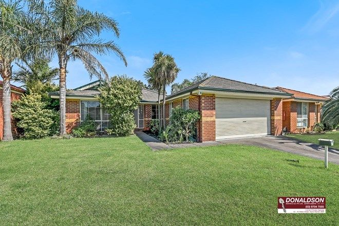 Picture of 17 Camberwell Drive, NARRE WARREN VIC 3805