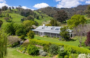 Picture of 865 Pages River Road, Murrurundi NSW 2338