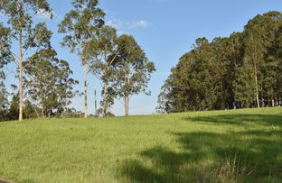 Picture of 9 Pennyfather Close, Yorklea NSW 2470
