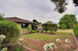 Picture of 42 Pridham Street, Farrer ACT 2607