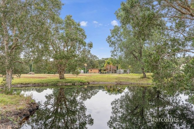 Picture of 848 Pimlico Road, WARDELL NSW 2477