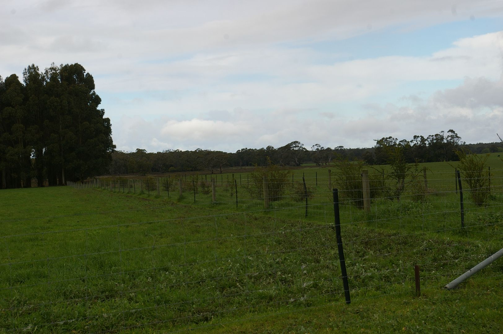- Murroa-Bukley Swamp Rd and Coles Track, Mount Napier VIC 3301, Image 1