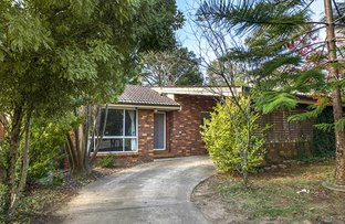 Picture of 5 Canberra Street, Wentworth Falls NSW 2782