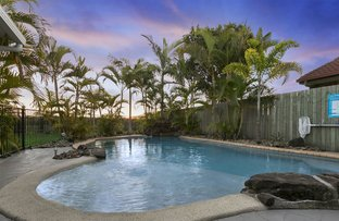 Picture of 82 Mountain Ash Drive, Mountain Creek QLD 4557