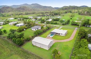 Picture of 2-6 Renwick Court, Alligator Creek QLD 4816