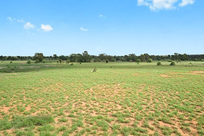 Picture of Glenmuir Middle Road, ST GEORGE QLD 4487