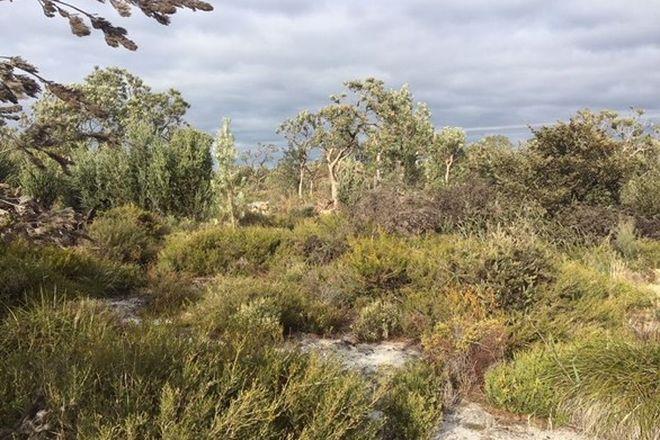 Picture of 170 Robinson Road, WANDI WA 6167