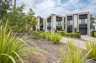 Picture of 1 Curlew Way, Peregian Springs QLD 4573