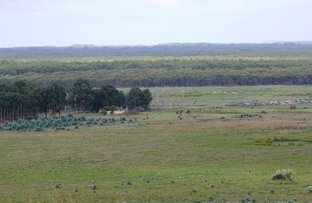 Picture of Lot 20 Orleans Bay Rd, Condingup WA 6450