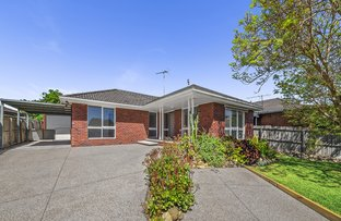 Picture of 55 Moruya Drive, Grovedale VIC 3216