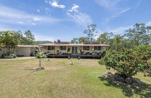 Picture of 78 Mundine Road, Upper Fine Flower NSW 2460