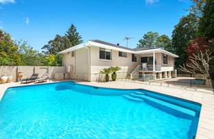 Picture of 17 Aronia Avenue, St Ives NSW 2075
