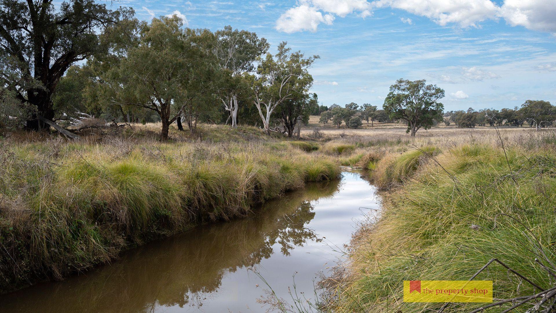 298 Gollan Road, Mudgee NSW 2850, Image 1