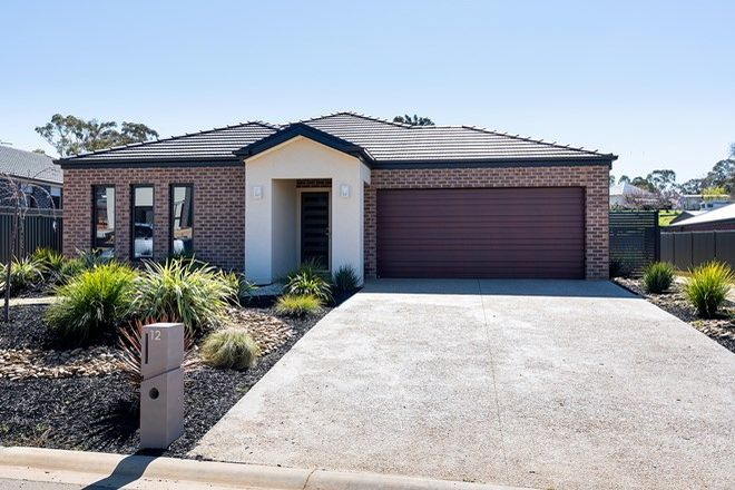 Picture of 12 Carloway Drive, CASTLEMAINE VIC 3450