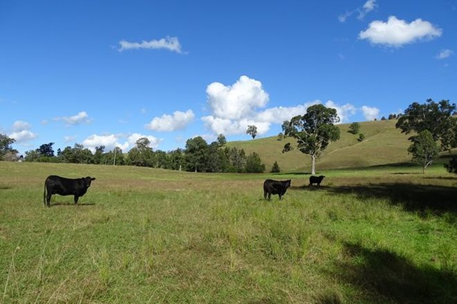 Picture of 321 Masseys Creek Rd,Eccleston via,, EAST GRESFORD NSW 2311