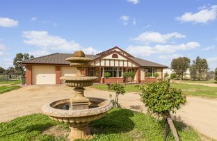 Picture of 11 Clancy Road, Gawler Belt SA 5118